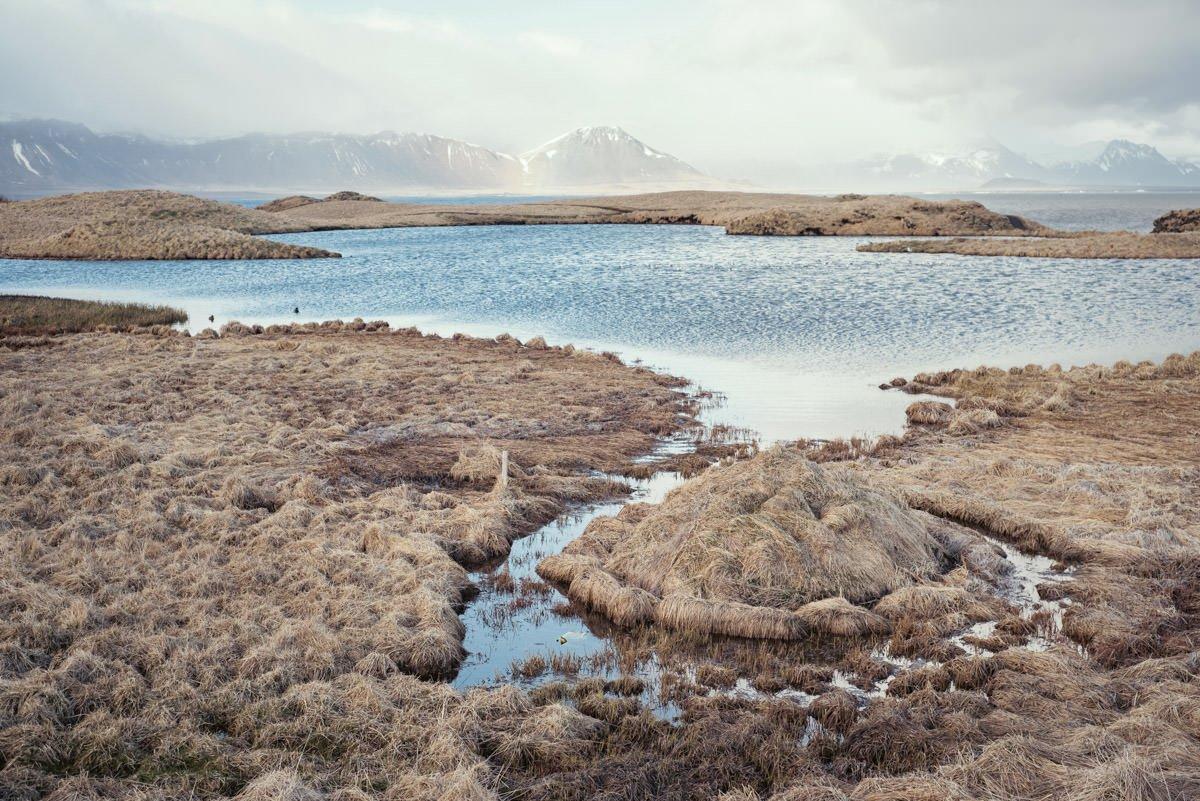 fotografia slubna islandia 14
