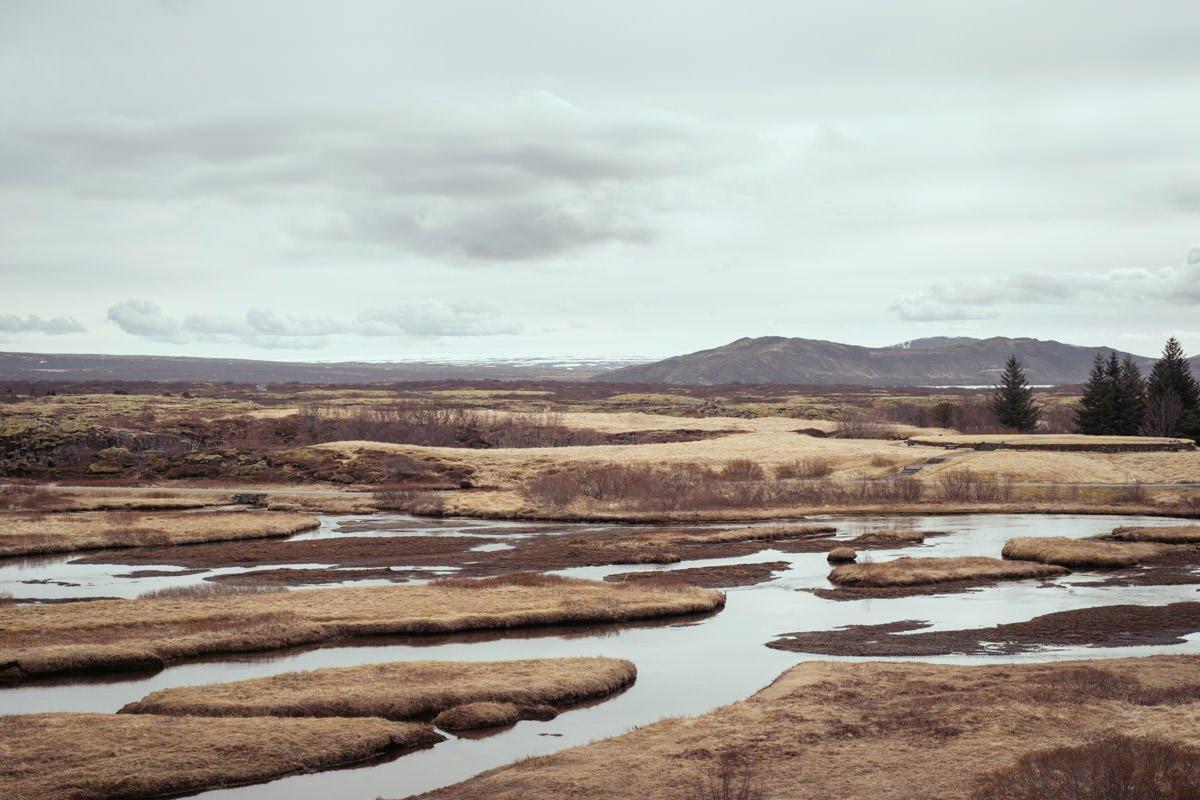 fotografia slubna islandia 39